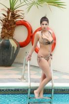 Cheap outcall prostitute in UAE - 22 year-old Komal Pool Model can meet you 24 7